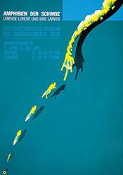 Kuhn-Klein Claude - Amphibien der Schweiz